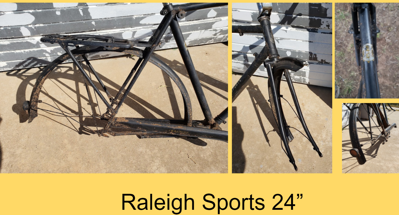 Raleigh Sports 24 2.png