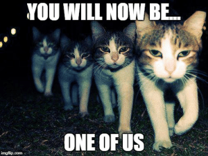 thumb_you-will-nowbe-one-of-us-imgflip-com-wrong-neighboorhood-cats-50352605.png